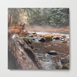 Peaceful Autumn Brook Metal Print