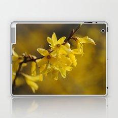 Gold Regen Laptop & iPad Skin