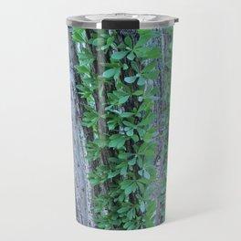 Ocotillo Fence Travel Mug