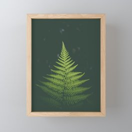 Illuminated Fern Framed Mini Art Print