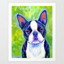 Effervescent - Colorful Boston Terrier Dog Art Print