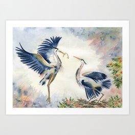 Great Blue Heron Couple Art Print