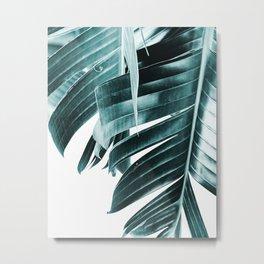 Banana leaves, Plant, Blue, Minimal, Modern, Wall art Metal Print