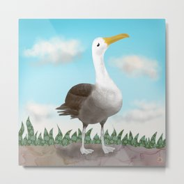 The Pretty Waved Albatross from Galapagos Metal Print