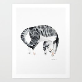 Yoga cat Art Print
