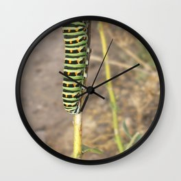 Gusano Wall Clock
