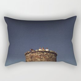 170//365 Rectangular Pillow