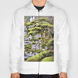 Mossy Rocks Hoody