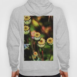 Poppy Flowers Pods Hoody