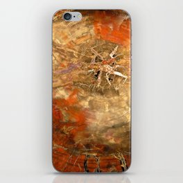 Petrified iPhone Skin