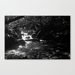 Shadow of The Mountain Canvas Print
