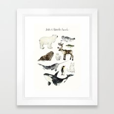Arctic & Antarctic Animals Framed Art Print