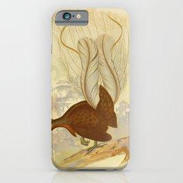 Vintage Print - The Birds of Australia (1891) - Prince Albert's Lyre Bird iPhone Case