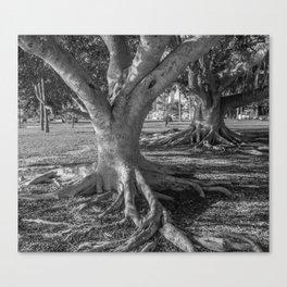 Tree Friends Canvas Print