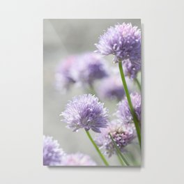 I dreamt of fragrant gardens Metal Print