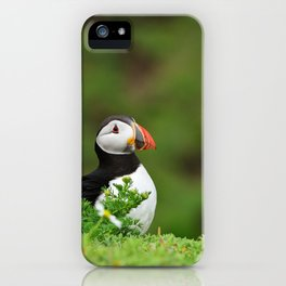 Puffin from Ireland  (RR 238) iPhone Case