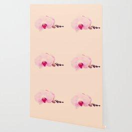 GENTLE ORCHID  II Wallpaper