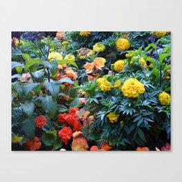 Splurge of colour Canvas Print