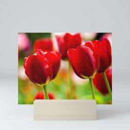 Bold Tulips Mini Art Print