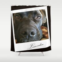 louis Shower Curtains featuring Louis online by Laake-Photos