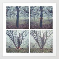 foggy days in the park Art Print