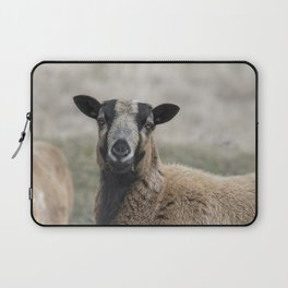 Barbados Blackbelly Sheep Portrait Laptop Sleeve