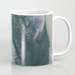 Cute Cat Coffee Mug