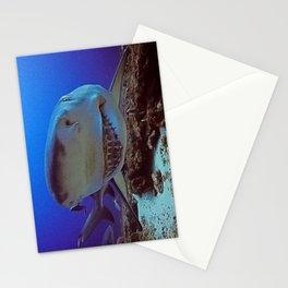 Snooty Shark Portrait Stationery Cards