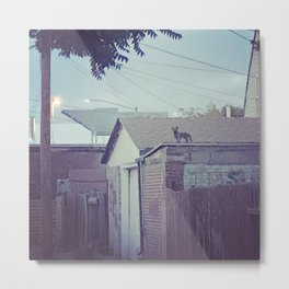 Who goes there! Metal Print