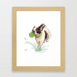 Bubba Splash Framed Art Print