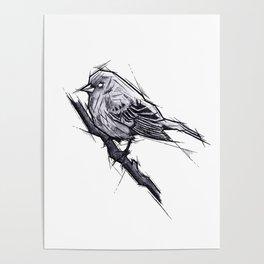 Bird Handmade Drawing, Art Sketch, Uccellino, Illustration Poster