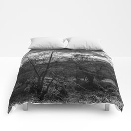 Trees in the morning Comforters