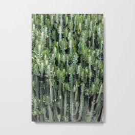 Candelabra Cactus Tree Metal Print