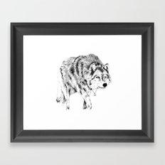 Mister Wolf Framed Art Print