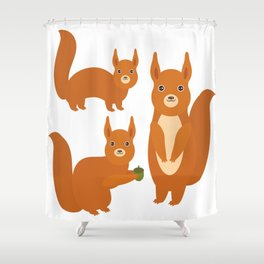 Set of funny red squirrels with fluffy tail with acorn  on white background Shower Curtain
