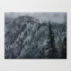 Mountain Slope Canvas Print