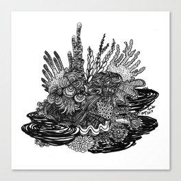 Hidden Cuttlefish Canvas Print