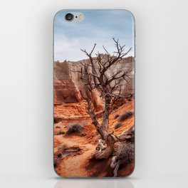 Picturesque Trail through Kodachrome Basin State Park iPhone Skin