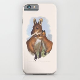 Red-necked Wallaby iPhone Case