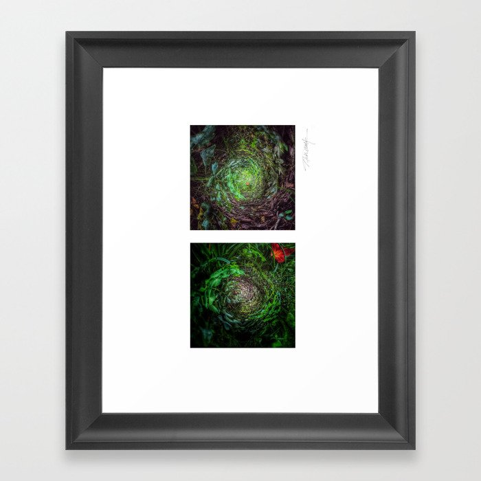 Nature's Twisted Path Framed Art Print