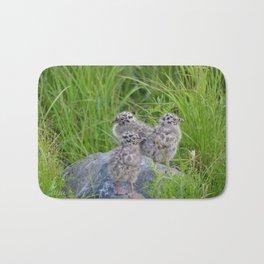 Triplets - Baby Seagulls Bath Mat