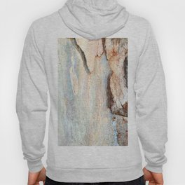 Eucalyptus tree bark and wood Hoody