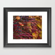 Berries and Leaves Framed Art Print