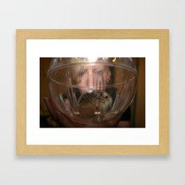 Hamster Ball Framed Art Print