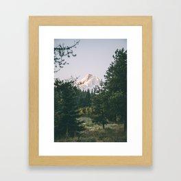 Mount Hood XIV Framed Art Print