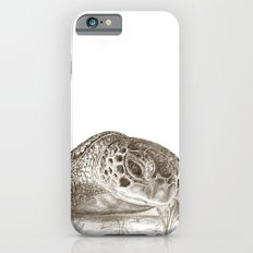 A Green Sea Turtle :: Earthtones Slim Case iPhone 6s