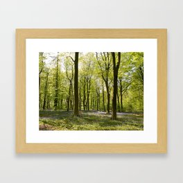 Deep in Micheldever Wood 2 Framed Art Print