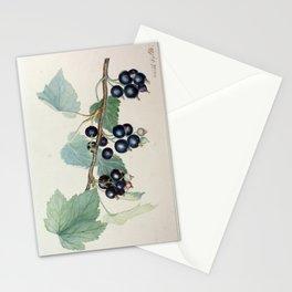 Climax Berry Botanical Painting - Peinture botanique de baies mûres  Stationery Cards