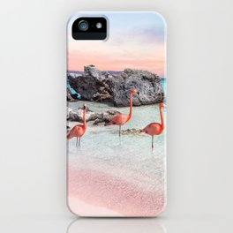 Aruba iPhone Case