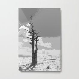"""Alone on Sandia"" Metal Print"